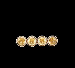 19,1 mm Felgeneinsatz OZ Racing (Kunststoff) gold